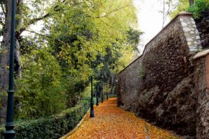 Bosque de la Alhambra